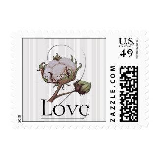 Algodón en el 2do sello del aniversario de la raya