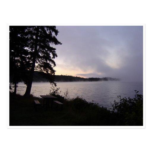 Algonquin Fall Morning Postcard