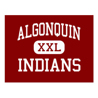Algonquin - Indians - Middle - Algonquin Illinois Postcard