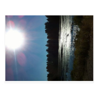 Algonquin Park, Ontario, Canada Postcard