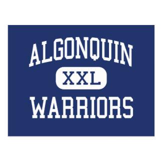 Algonquin Warriors Middle Averill Park Postcard