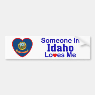 Alguien en Idaho me ama Pegatina De Parachoque