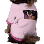 Alguien necesita el perro de la chihuahua del café ropa de perro