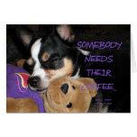 Alguien necesita el perro de la chihuahua del café tarjeta