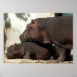 Alguien para vigilar mí el retrato del Hippopotamu Impresiones