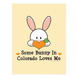 Algún conejito en Colorado me ama postal