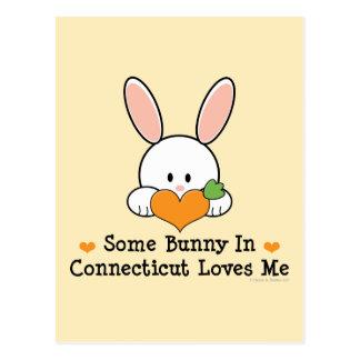 Algún conejito en Connecticut me ama postal