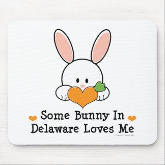 Algún conejito en Delaware me ama Mousepd Alfombrillas De Ratón