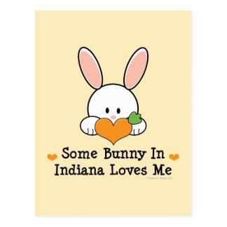 Algún conejito en Indiana me ama postal