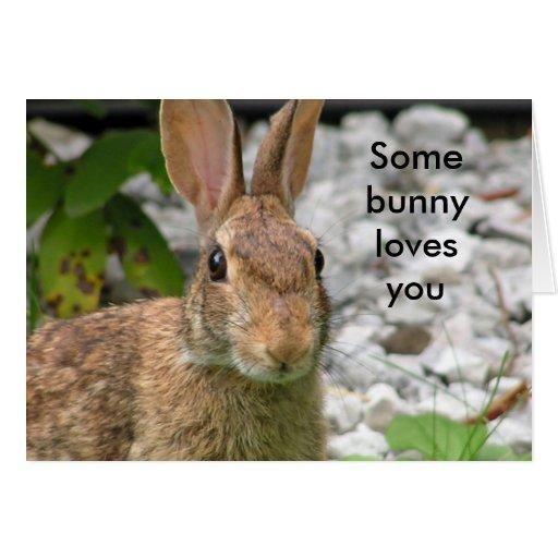 Algún conejito le ama tarjeta de felicitación