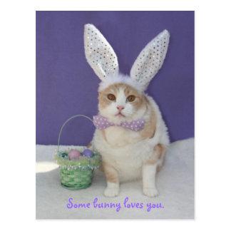 Algún conejito le ama tarjetas postales
