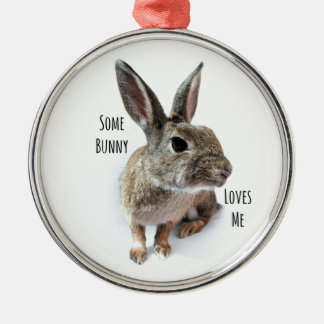 Algún conejito me ama conejo Pascua de la Adorno Navideño Redondo De Metal