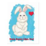 Algún conejito tiene gusto de usted tarjeta del postal
