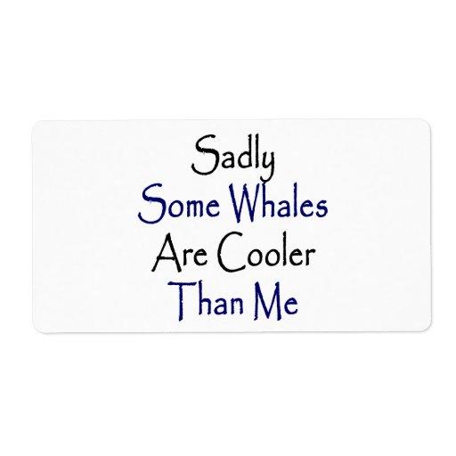 Algunas ballenas son tristemente más frescas que m etiquetas de envío