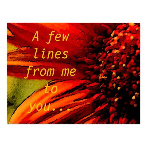Algunas líneas de mí a usted - flor roja postales