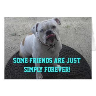 Algunos amigos están apenas simplemente para siemp tarjeta