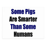 Algunos cerdos son más elegantes que algunos seres postal