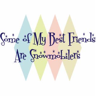 Algunos de mis mejores amigos son Snowmobilers Esculturas Fotográficas