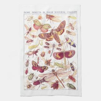 Algunos insectos en sus colores naturales toallas