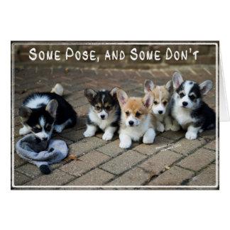 Algunos presentan, algunos no hacen los perritos tarjeta de felicitación