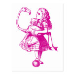 Alice and Flamingo Inked Pink Postcard