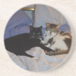 "Alice and Sydney Coaster<br><div class=""desc"">Alice and Sidney</div>"