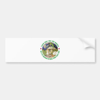 Alice and the Caterpillar in Wonderland Bumper Sticker