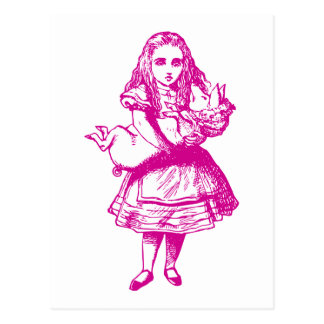 Alice and the Pig Baby Pink Postcard