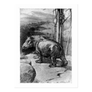 Alice B. Woodward :Coryphodon art postcard