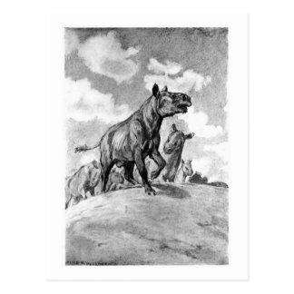 Alice B. Woodward: Hyracodon art poscard Postcard