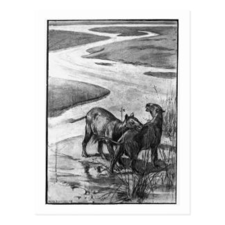 Alice B. Woodward: Hyracotherium art postcard