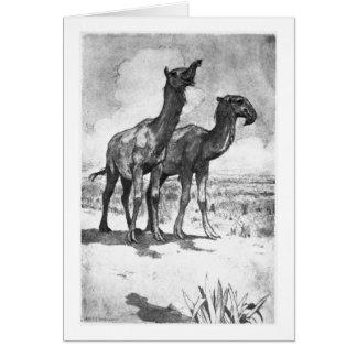 Alice B. Woodward: Macrauchenia art card