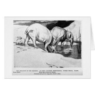 Alice B. Woodward: Moeritherium art card
