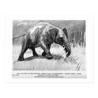 Alice B. Woodward: Palaeomastodon art postcard