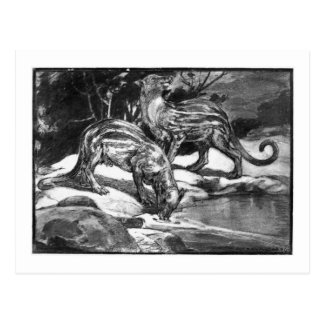 Alice B. Woodward: Phenacodus art postcard