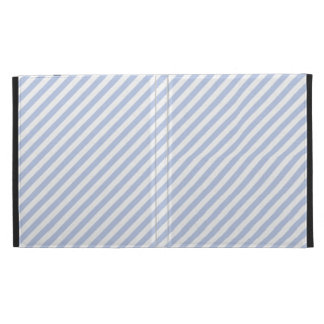 Alice Blue Tent Stripe in English Country Garden iPad Folio Covers