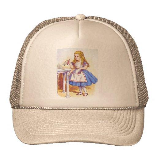 Alice Drinks Color Trucker Hat
