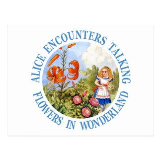 Alice Encounters Talking Flower in Wonderland Postcard
