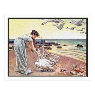 Alice Havers - The White Swans Postcard