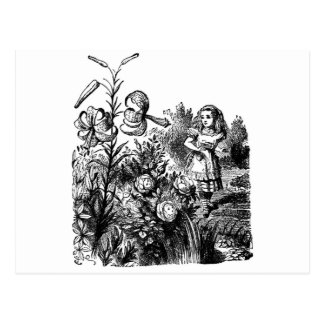 Alice in the Garden of Live Flowers Postcards