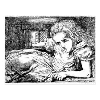 Alice in the White Rabbit's House Postcard