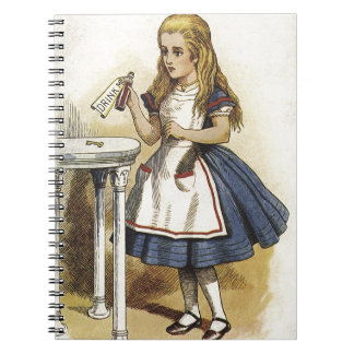 Alice in Wnderland Notebook