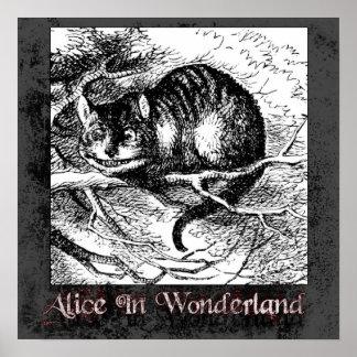 Alice In Wonderland 35 Poster