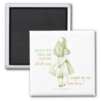 Alice in Wonderland Fridge Magnets