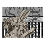 Alice In Wonderland White Rabbit Grunge Postcards