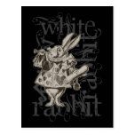 Alice In Wonderland White Rabbit Grunge (Single) Post Cards