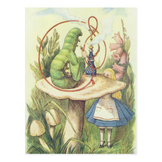 Alice Meets the Caterpillar Post Cards