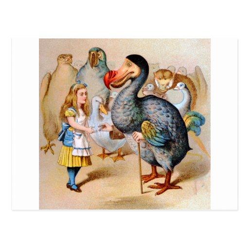 Alice Meets the Dodo Bird at the Caucus Race Postcard