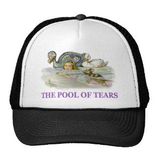 Alice swims in the pool of tears. trucker hat