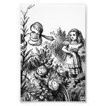 Alice Talks with Garden Flowers Photographic Print